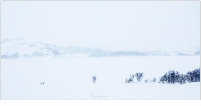 Winter op Lofoten 2019 - deel 1