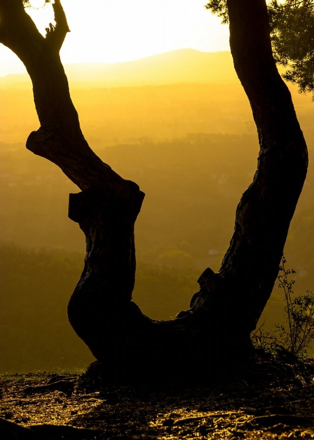 Zonsondergang bij Mont Denise door Joke van Veen