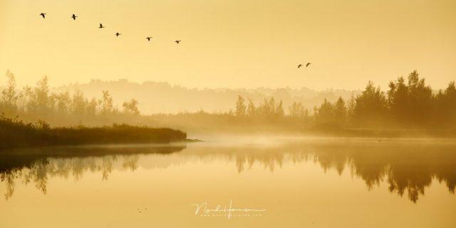 Een mistige ochtend in de groote peel, een van de Landschapsfoto's uit het archief van Nando