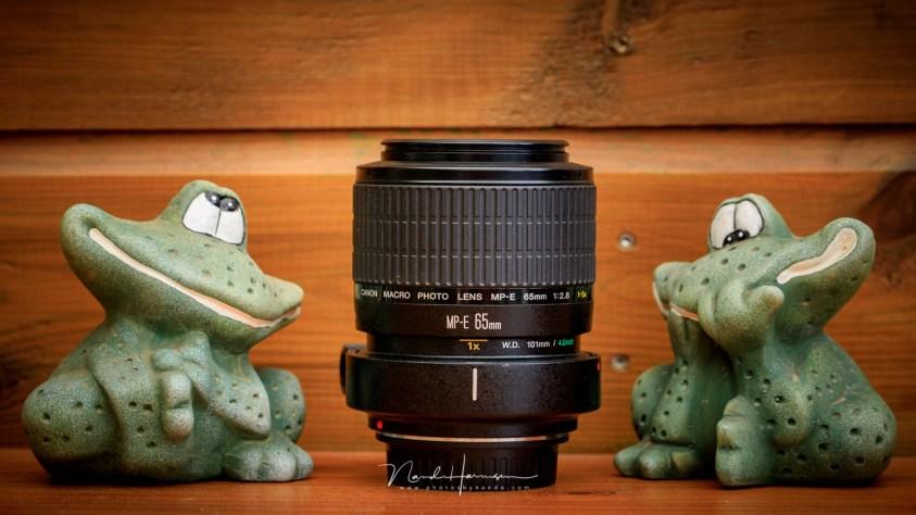 Extreme macro met de Canon MP-E65 - een heel moeilijke lens om te gebruiken
