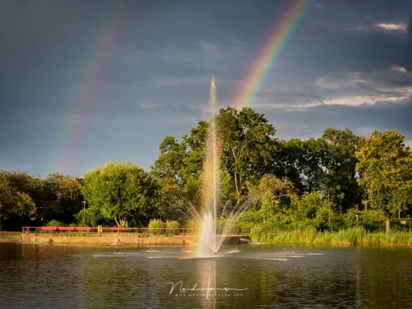 Regenboog in het park - Mijn ervaring met een Olympus camera