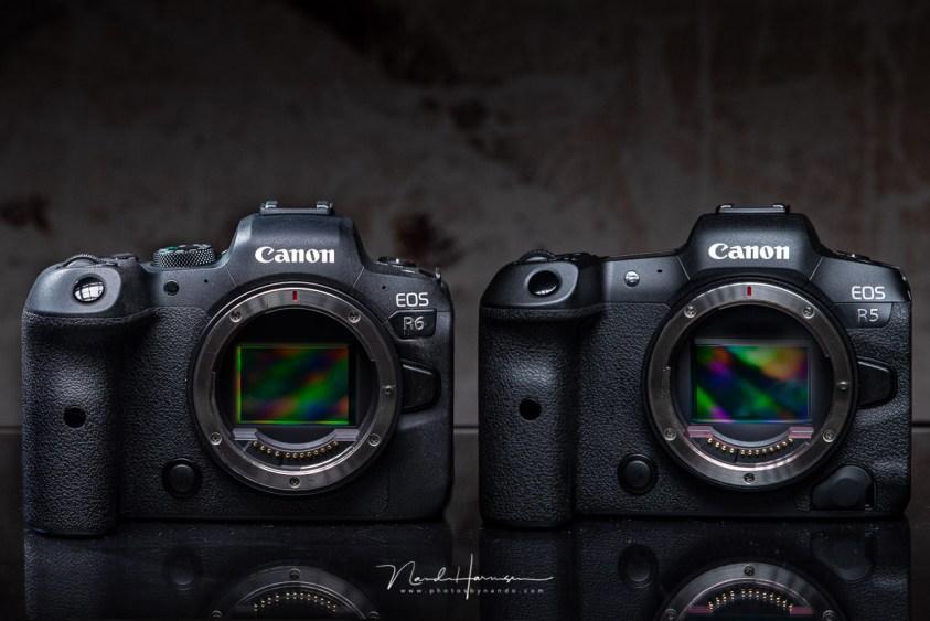 De canon EOS R5 en Canon EOS R6 naast elkaar,