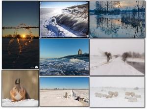 De mooiste winterfoto's van 2021