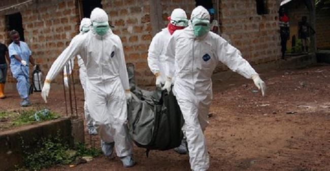 IFC says the Ebola outbreak is an econmic disaster for Guinea, Liberia and Sierra Leone