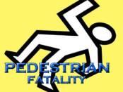 pedestrian killed