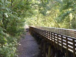 New Albany MS. Tanglefoot Rails to traisl hall of fame winner