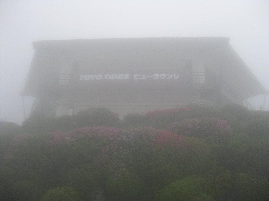 Misty Toyo Tyres