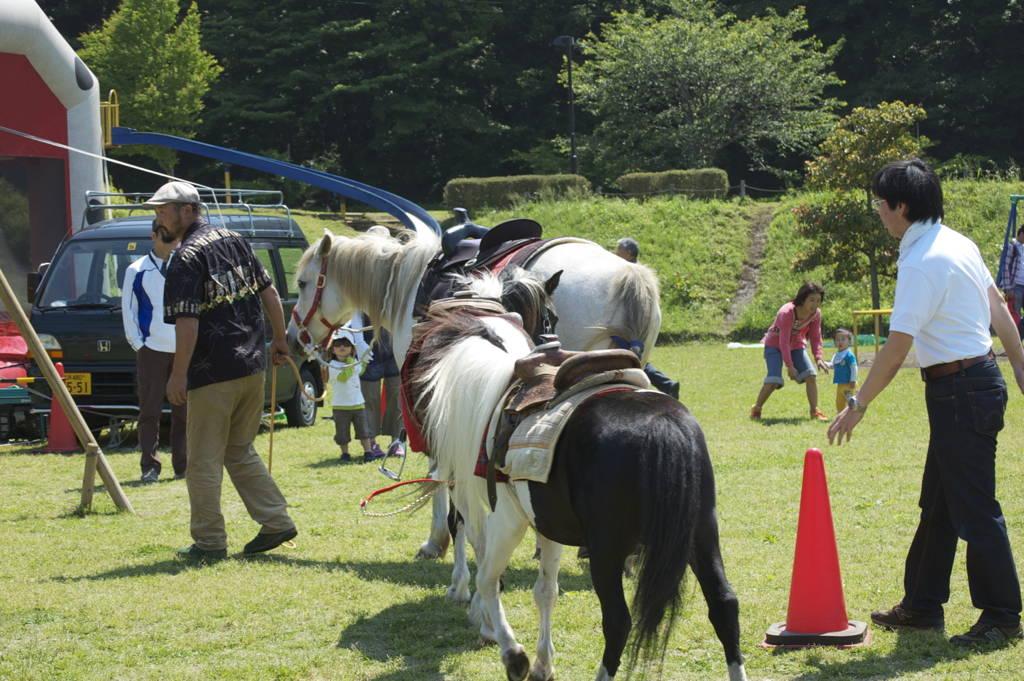 Pony rides at the matsuri
