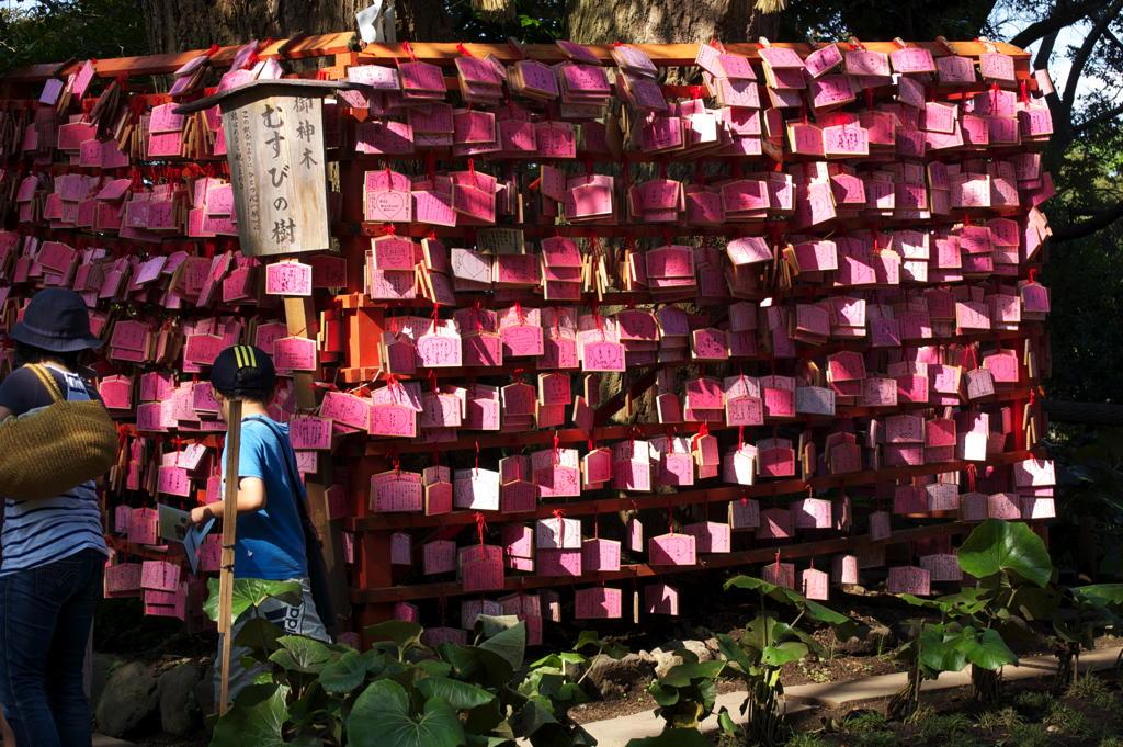Eifuda wooden message blocks at the temple