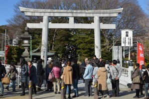 Jinja Torii Gate