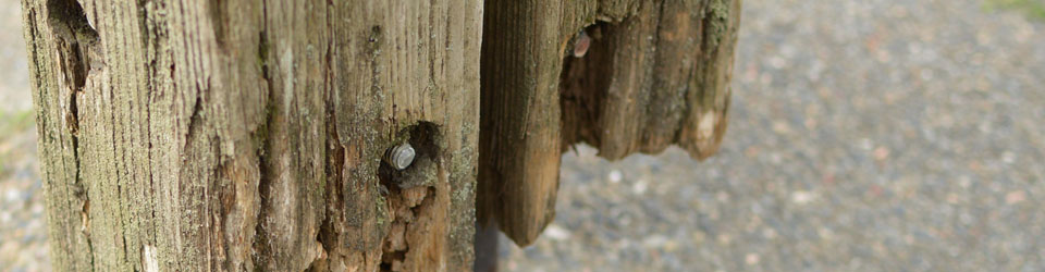 Wooden Posts on a steel frame which no longer touch the ground - cropped for header image.