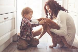 κατοικιδιο, Τα παιδιά θέλουν κατοικίδιο: τι να κάνετε