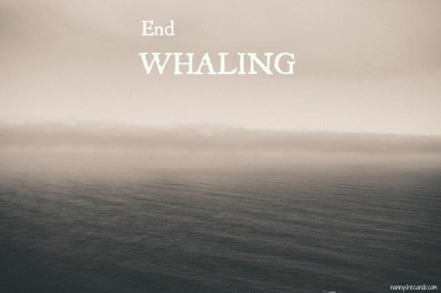 japanese, whaling, greenpeace, nannyshecando, opinion