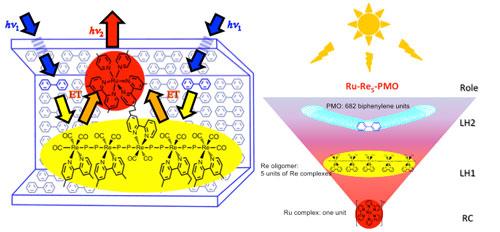 ruthenium complex connected to the center of the rhenium tetramer