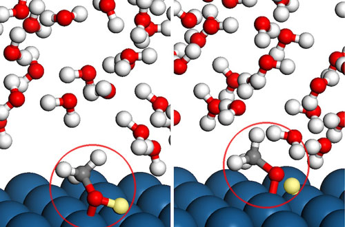 Methanol Molecules