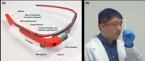 Labeled Google Glass and demonstration of imaging a rapid diagnostic test