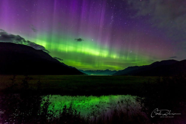 Green and purple aurora borealis in August (first aurora of the season), Twentymile Valley, Chugach National Forest, Alaska.