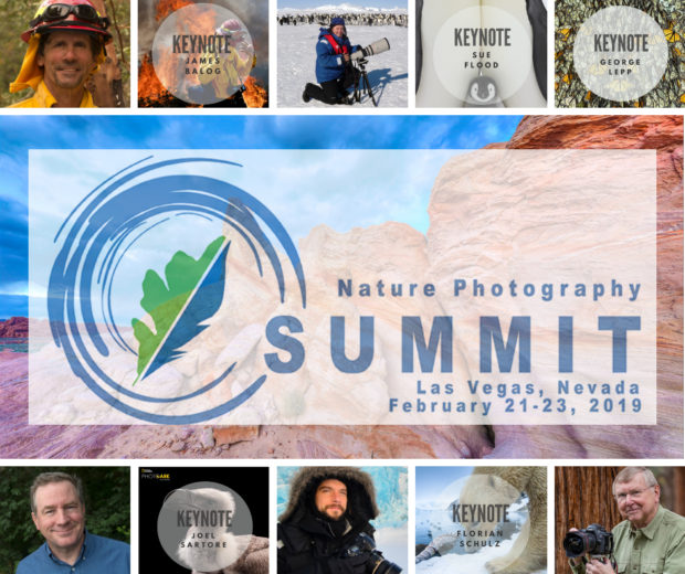 Nature Photography Summit: Great opportunities for photographers you won't find anywhere else.