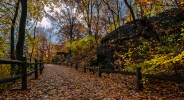 Autumn Trail Creates a Path Into the Forest. (HDR Compilation of 5 images.)