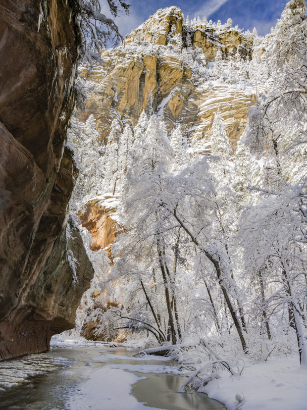 "Showcase 2019 Top 100 winner: ""Clearing Snowstorm, West Fork of Oak Creek, Sedona, Arizona"" © Harvey Stearn."