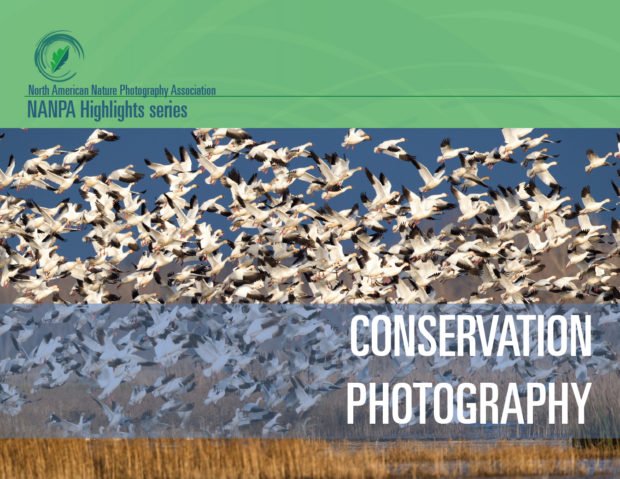 NANPA's brand new conservation handbook is full of information on thinking like a conservationist, telling great stories, acting ethically and collaborating with scientists.