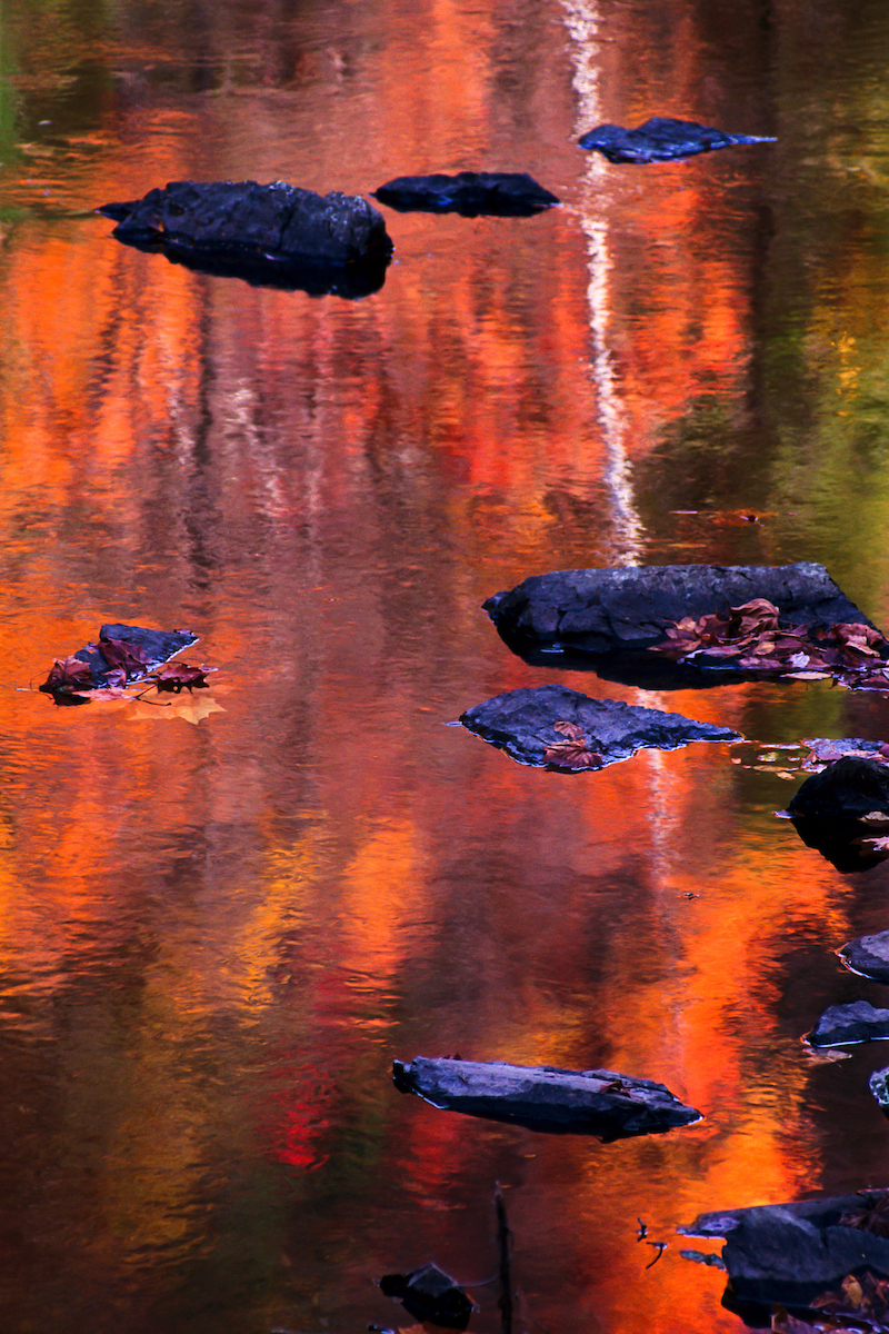 Smokies Reflection: Brilliant autumn color reflecting in the many streams can make for some lovely impressionistic images.