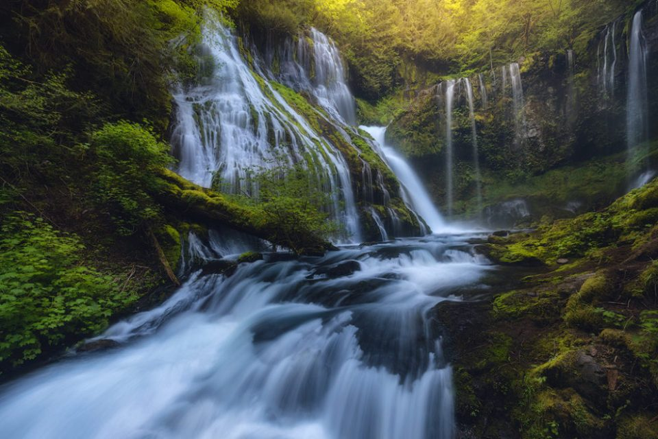 "Showcase 2019 Top 100 winner: "" Hazy Light Filters Into Panther Creek Falls, Panther Creek, Washington"" © Ian S. Frazier."