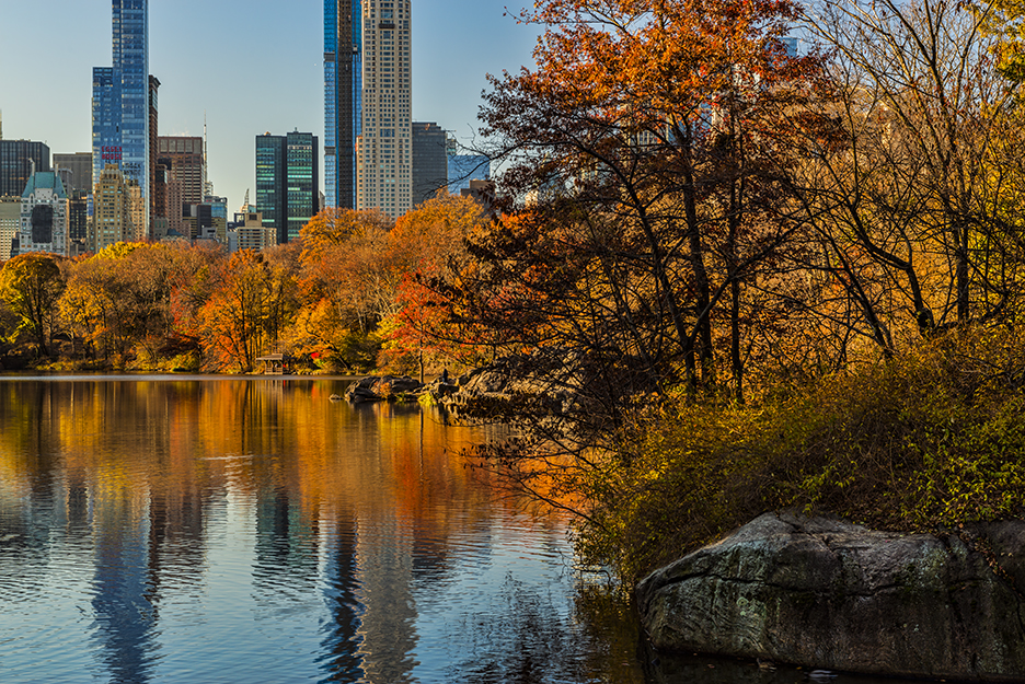 Fall foliage around The Lake Central Park. The tightest composition I could shoot with my 24-70mm lens.