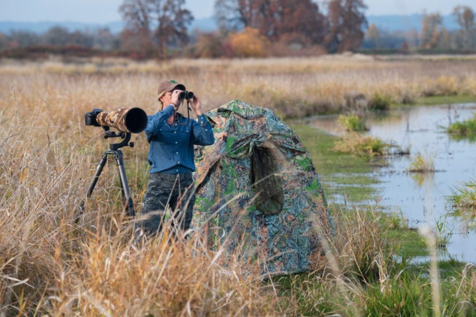 Photo of a man standing next to a blind in a marsh. Local wetlands, especially during migration, can be extremely productive for shooting a variety of bird species.