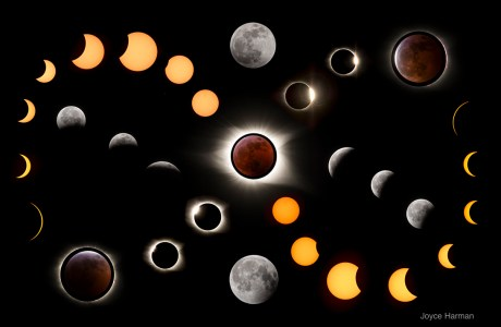 "Showcase 2020 Top 100 Winner: ""Photo collage of solar and lunar eclipses, Tennessee and Virginia"" © Joyce Harman"