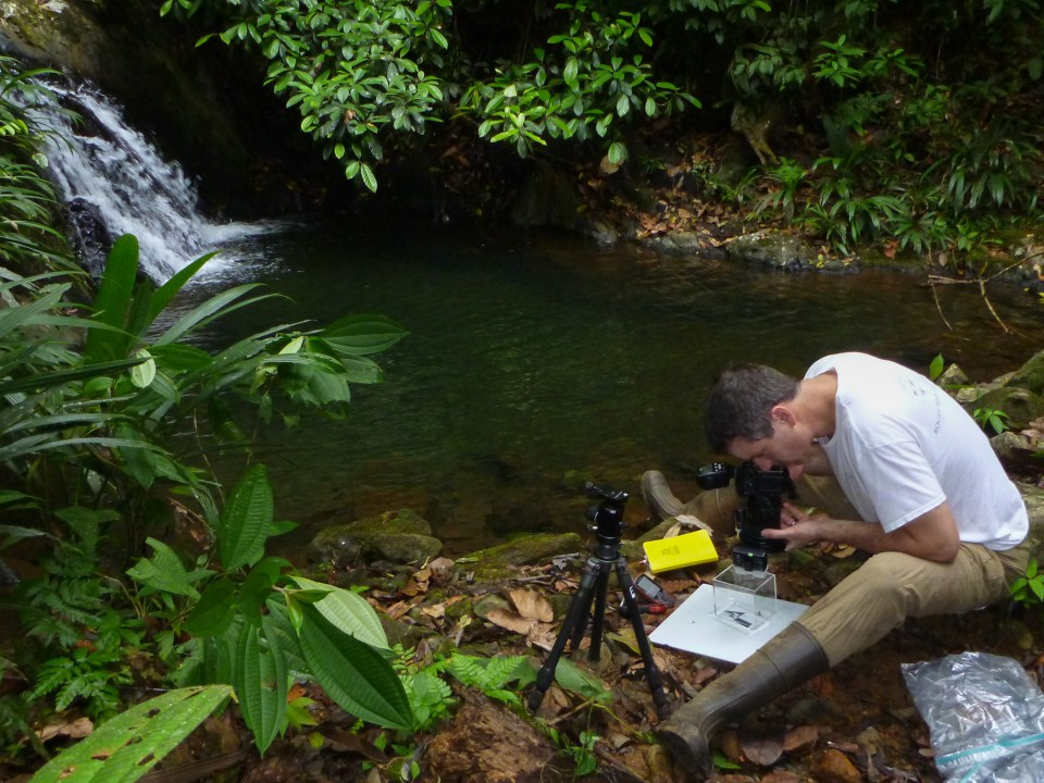 Image of Twan Leenders  Photographing in Panama by a waterfall.
