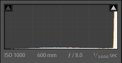 Histogram of Edited TIF