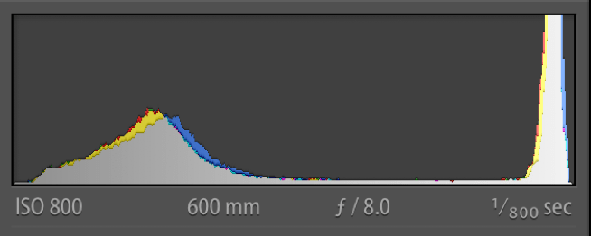 Edited TIF (after DeNoise A1)  Histogram