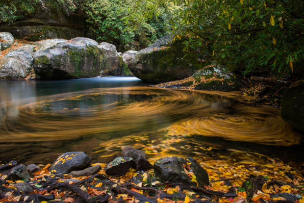 Big Creek in the Smoky Mountains National Park. ©Tom Haxby