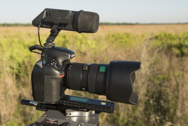 A simple on-camera stereo microphone is a great starting point to record audio for your videos.