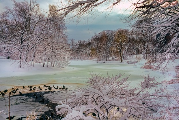 New York City's Central Park in winter. © F.M. Kearney