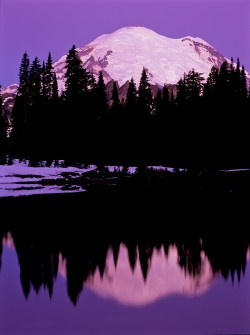 Photographs of Mt. Rainier and its reflection can be made at Tipsoo Lake or Reflection Lakes.