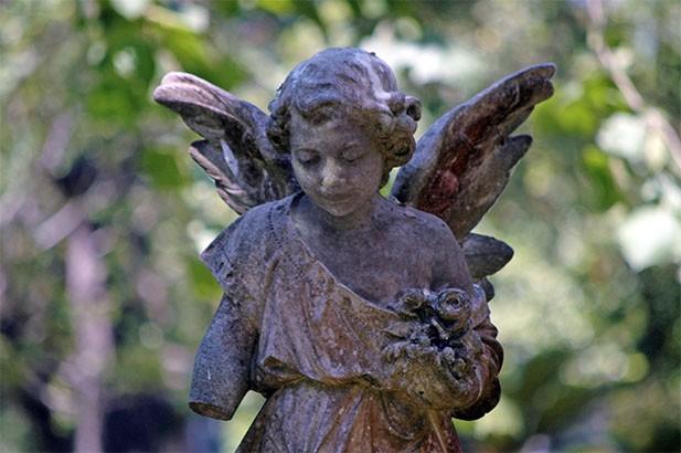 angelinme