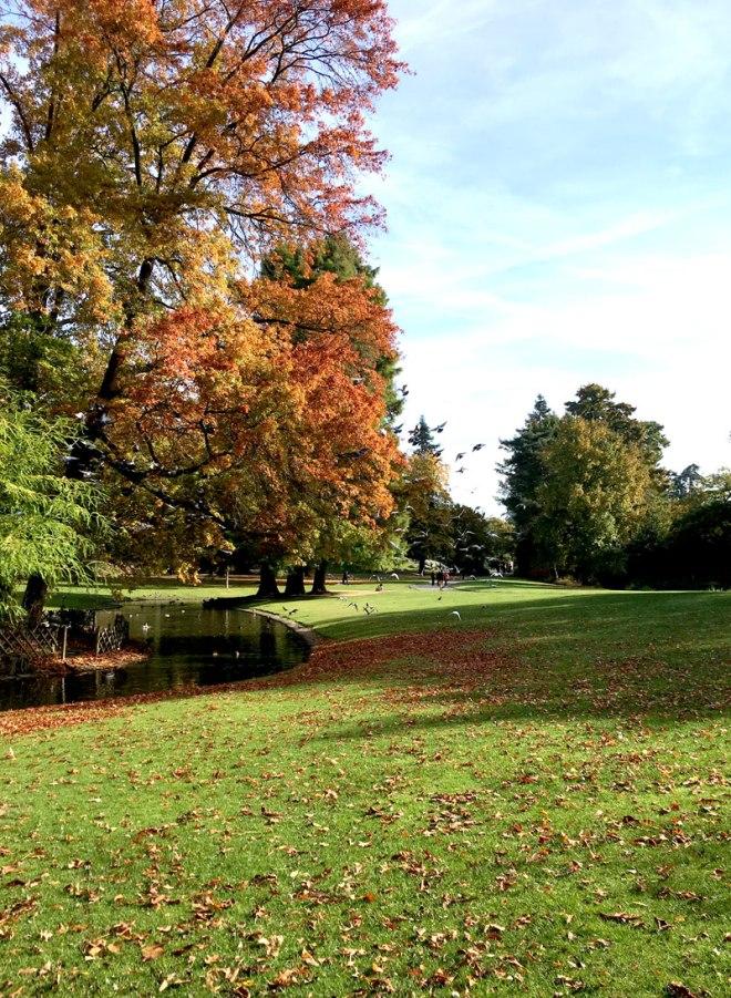 Balade au Parc de Procé à Nantes