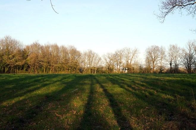 Parc de la Bégraisière à Saint-Herblain à côté de Nantes