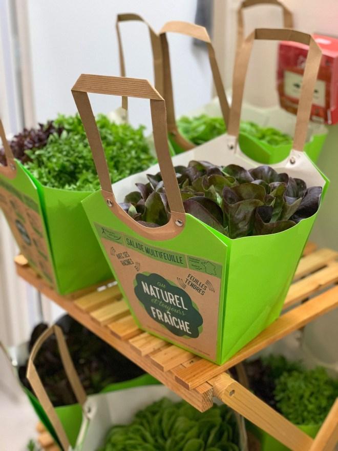 La boutique du végétal à Nantes, boutique éphémère par Vegepolys