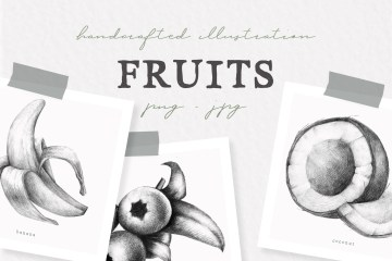Hand drawn Fruit Collection Illustrations