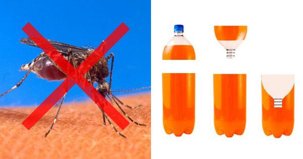 蚊取りボトルで蚊を退治