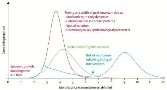 Graph of covid 19 outbreak peaks