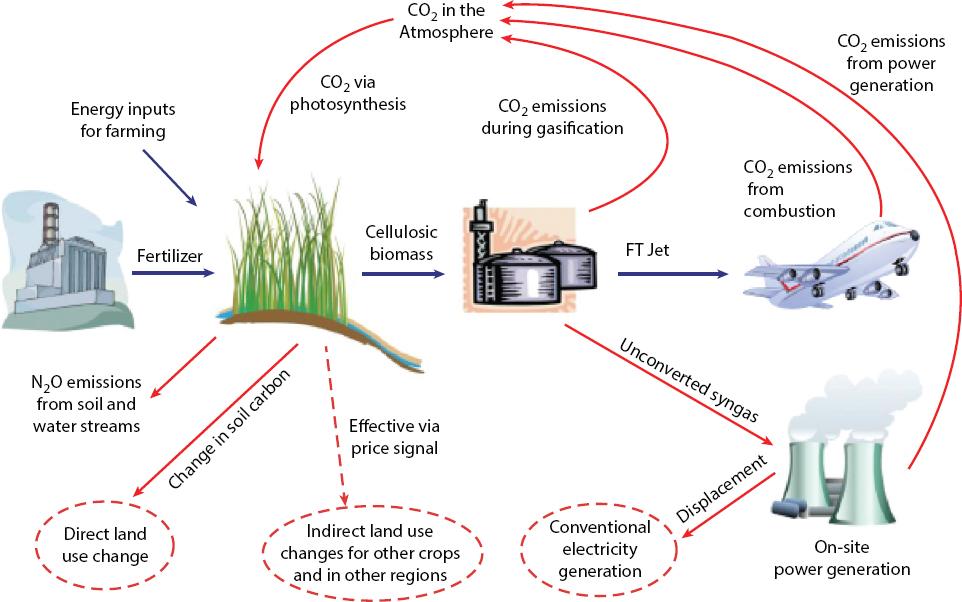 Image result for bio-jet fuel precursors