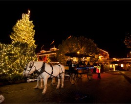 festival-of-lights-6-yountville