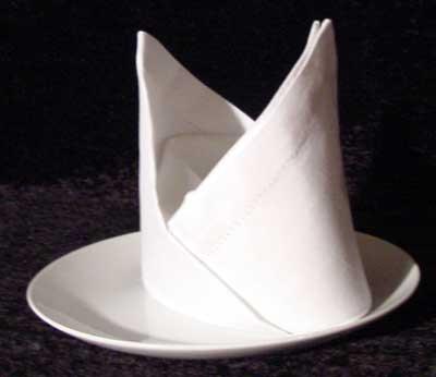creative napkin folding instructions