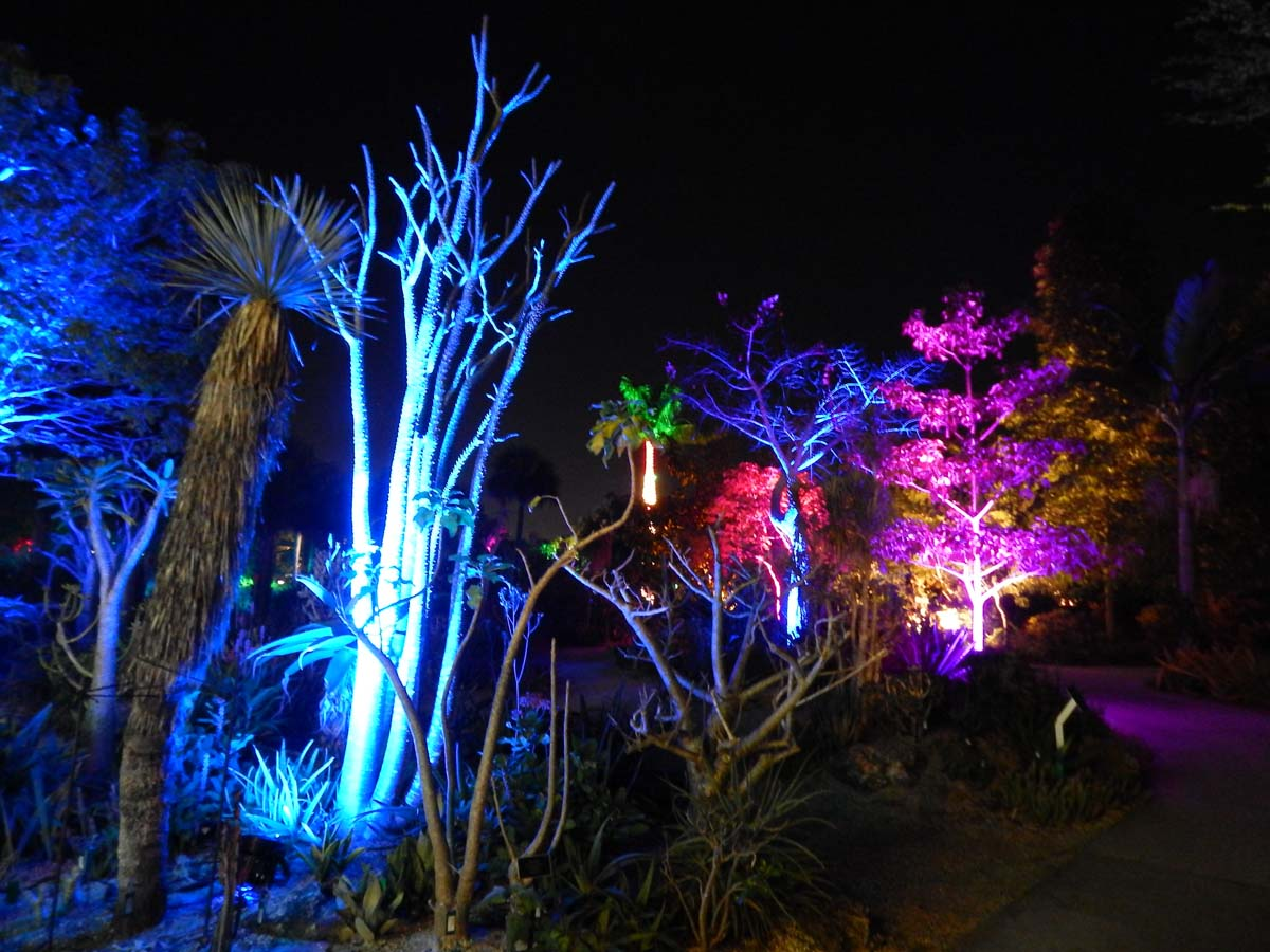 Led Grow Lights Herbs