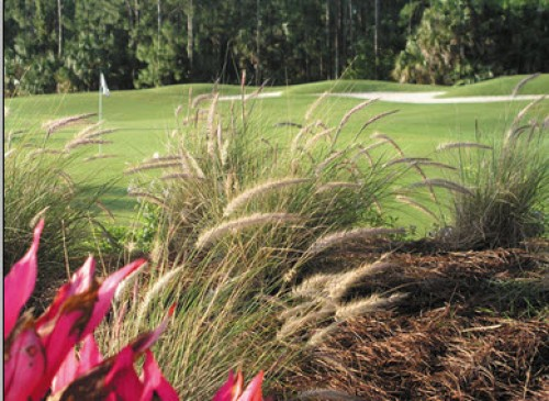 Naples Heritage Golf Club - Naples Heritage Golf Club - Naples Golf Homes Naples Golf Guy