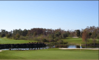 Cypress Woods Golf Course Naples